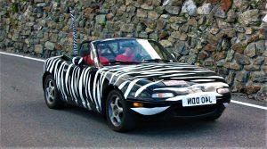 Wacky banger rally car
